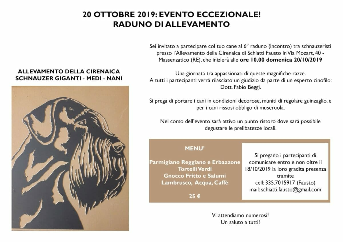 raduno schnauzer allevamento della cirenaica 20 ottobre 2019